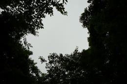 空P1020491.jpg